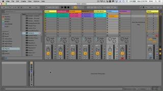 6. Bass Lines