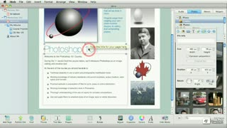 41. Text and the Graphic Inspector 2