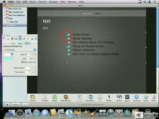 34. Adding Graphic Bullets to Text Lists