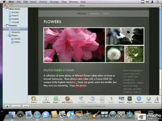 74. A Quick Overview of the Local Files Published by iWeb