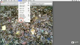27. Cropping And Rotating Images And PDFs