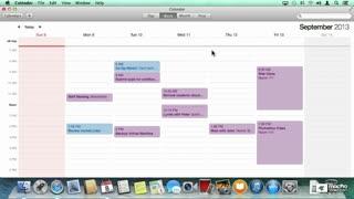 6. Navigating the Calendar