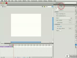 07. Document Window: Stage, Pasteboard, and View Settings