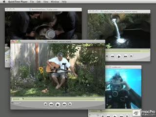 DesignProVideo - Flash CS4 105 Encoding Video For Adobe CS4 (1 cd)
