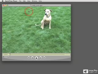 Flash CS4 105: Encoding Video for Adobe CS4 - Preview Video