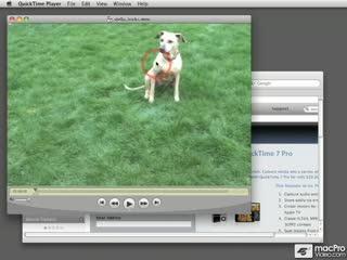 05. Enabling QuickTime Pro