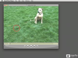 08. Trimming a Video in QuickTime Pro