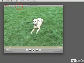 09. Saving a New Clip in QuickTime Pro