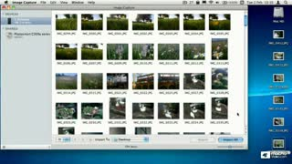 45. Workflow 1 - Create a PDF Contact Sheet
