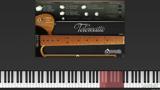 17. The Telematic