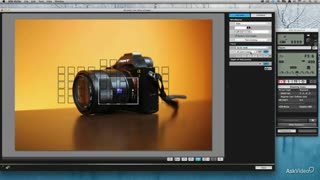 16. Manual Focus Tips and Tech