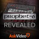 Prophet 6 101 - Prophet 6 Revealed