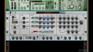 9. Alligator 3