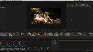 DaVinci Resolve 105: Managing Color Grades	 - Preview Video