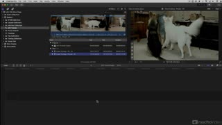 Final Cut Pro FastTrack 202: Multicam Techniques - Preview Video