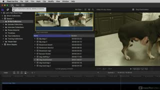 Final Cut Pro X 100: 10.3 New Features! - Preview Video