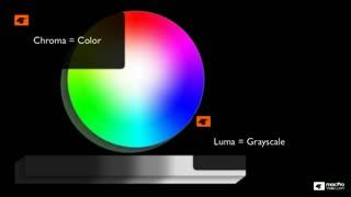 4. Understanding Color