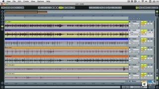 49. Multitrack Warping