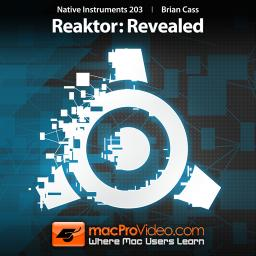 Native Instruments 203 Reaktor: Revealed Product Image