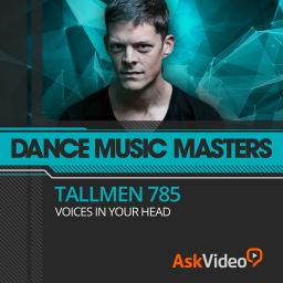 Dance Music Masters 108Tallmen 785 | Voices In Your Head Product Image