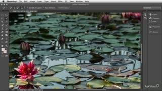 58. Simplifying Photoshop Menus