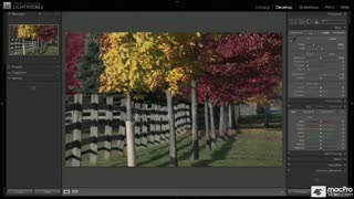 Learn Crop & Straighten skills in this tutorial video from