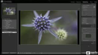 71. Slideshow Overview