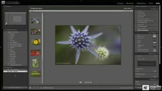 91. Working with Lightroom Flash Gallery