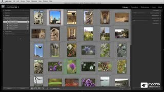 11. Working with the Grid View