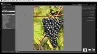 35. Working with Lightroom History (History panel)