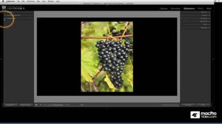 39. Slideshow Tips
