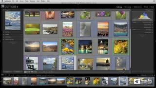 04. QuickStart: Lightroom Interface