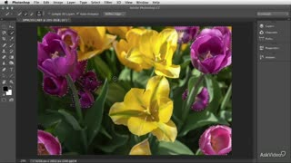 17. Layer Masks & Mask Edge (with Color Balance demo)