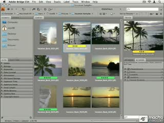 17. Sorting & Filtering Your Photos