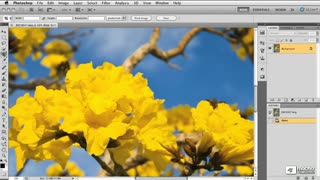Photoshop CS5 105: Retouching & Image Adjustment - Preview Video