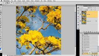 55. Creating a Simulated Lens Blur