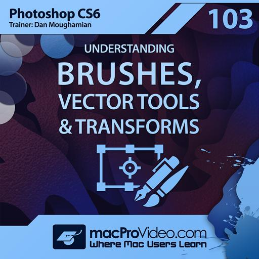 Understanding Brushes, Vector Tools and Transforms