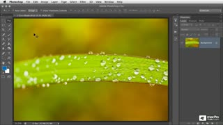Photoshop CS6 103: Understanding Brushes, Vector Tools and Transforms - Preview Video