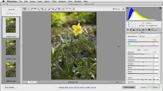 45. Synchronizing Edits Across Multiple Pictures