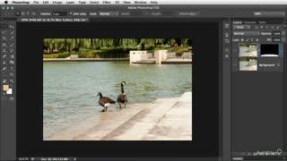 38. Blur Gallery: Background Blurs