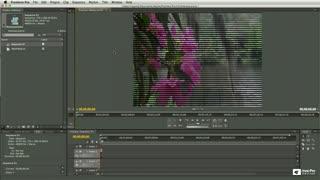 16. Progressive Scan vs. Interlaced Video