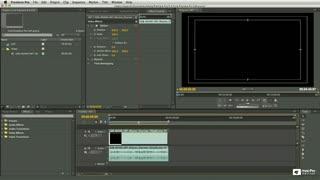 28. Video & Audio Track Options
