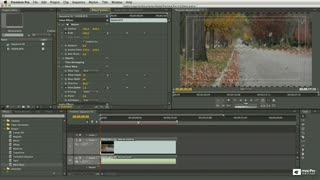 33. Removing Effects from Clips