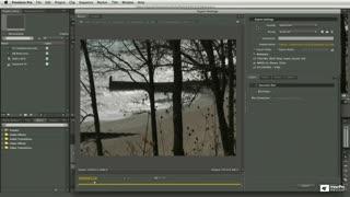 64. Flash Video Settings