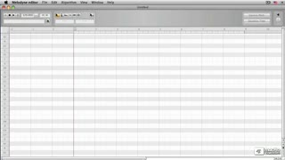 11. Your Preferences in Melodyne Editor