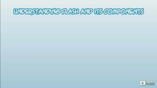 2. Understanding Flash's Components