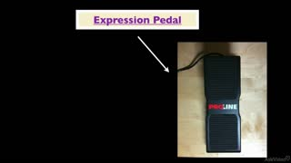 11. Expression Pedals