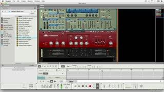 35. Cerberus Bass Amp
