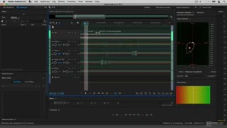 16. Exporting to Premiere