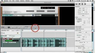 12. Creating REX Loops